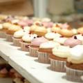 le gout très sucré des cupcakes