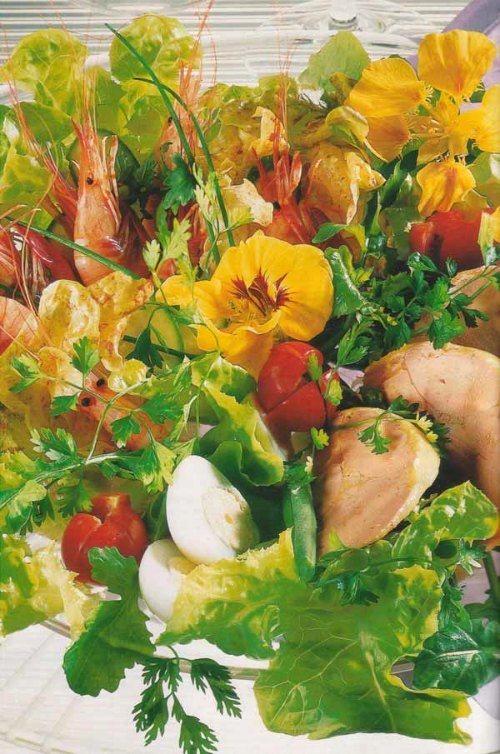 salade-folle